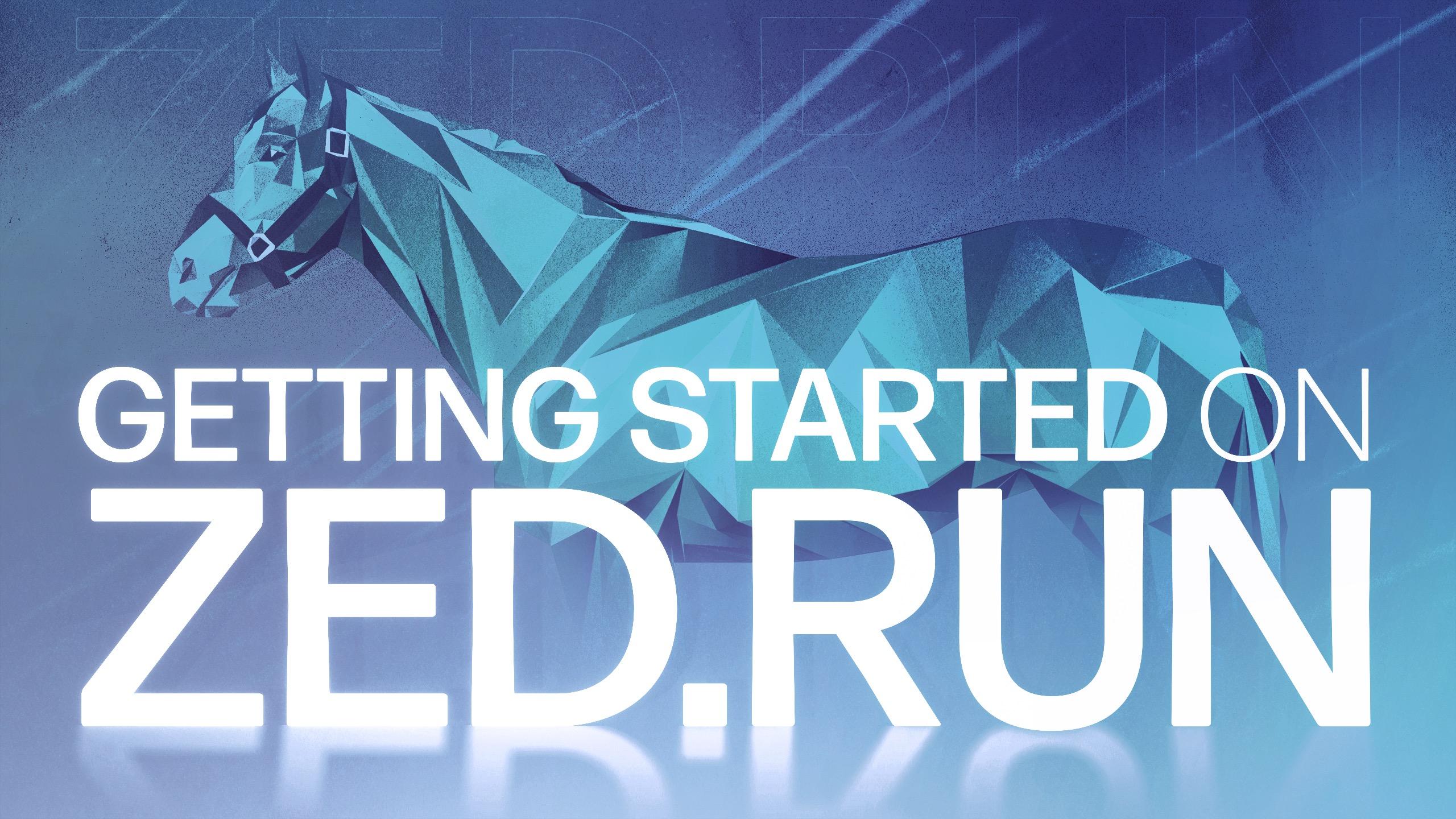 A Beginner's Guide to Zed Run: Digital Horse Racing NFT Game